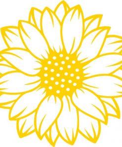 sunflower svg png 1