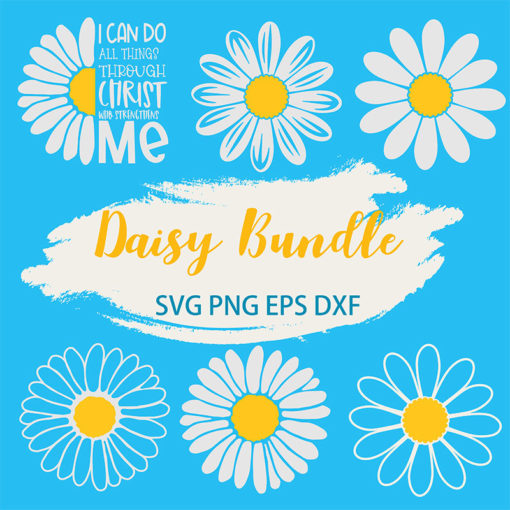 Daisy bundle