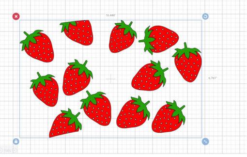 full wrap Strawberry 1