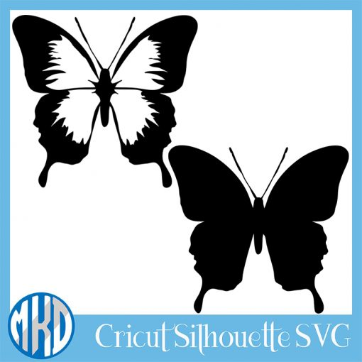 Butterfly svg png free
